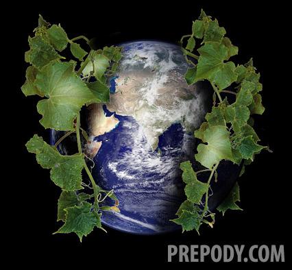 Съешь огурец, спаси планету!